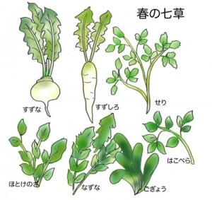 nanakusa01